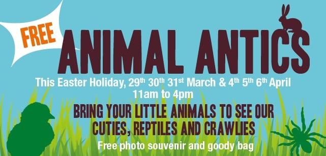 Free Activities With Animal Antics I Love Newcastle