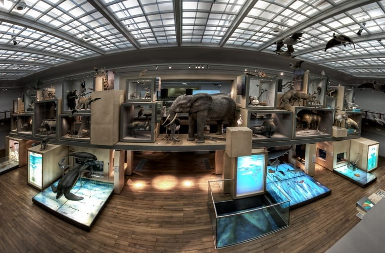 Newcastle's Great North Museum has big plans for 2016 I Love Newcastle