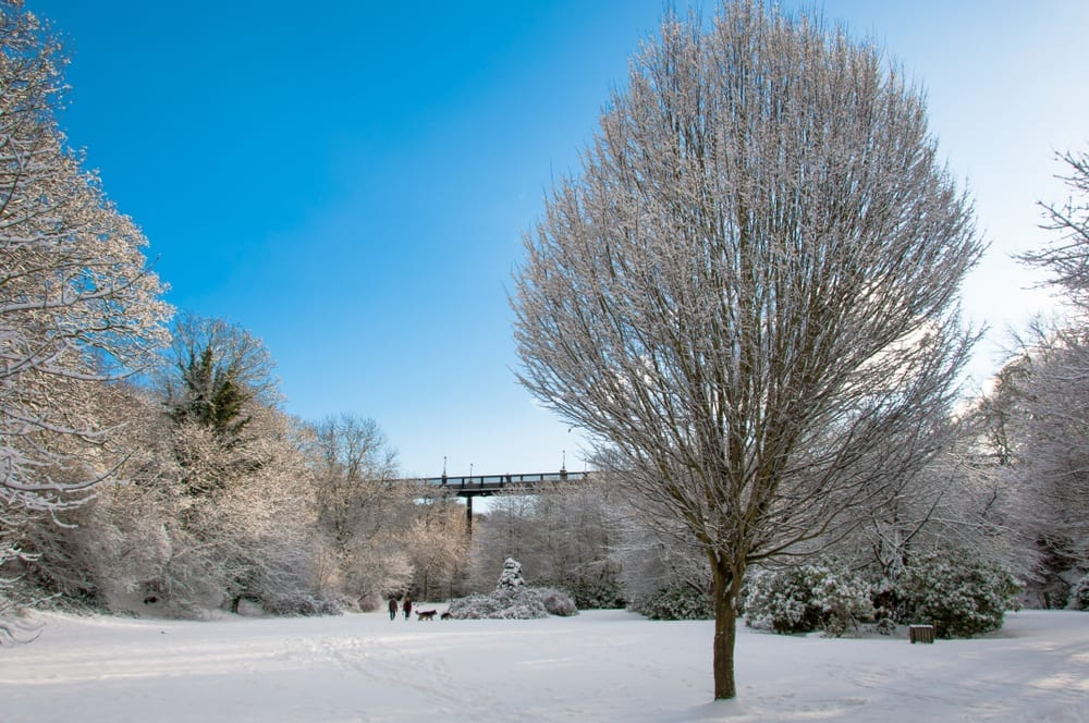Five ways to beat the 'Beast from the East' I Love Newcastle