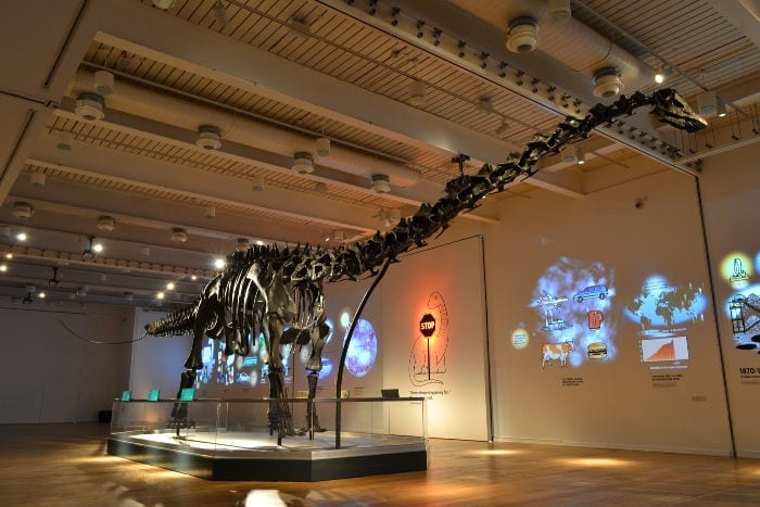 Much-anticipated dinosaur exhibition opens at Great North Museum: Hancock I Love Newcastle