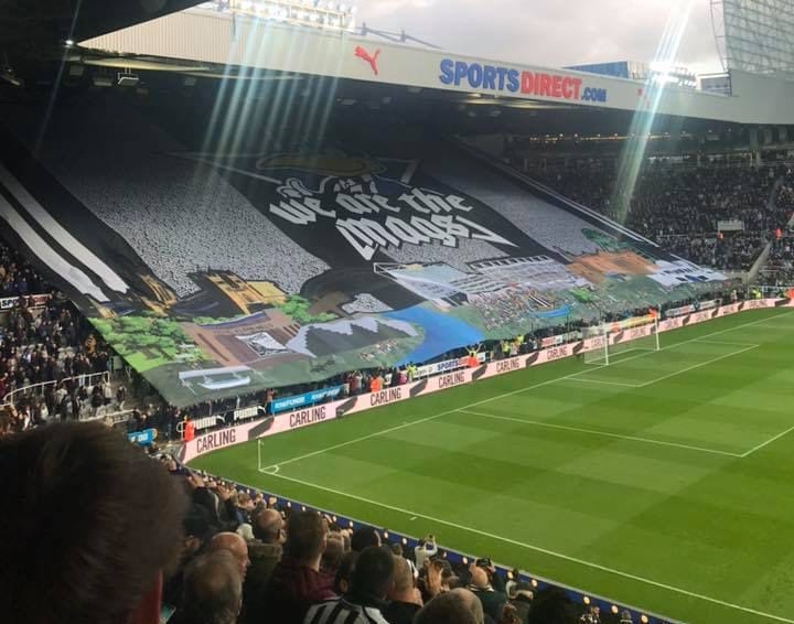 Ahead of Sunday's final game of the season, we look at what is to come from the Mags I Love Newcastle